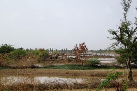 Flooding in Niger, October 2012.