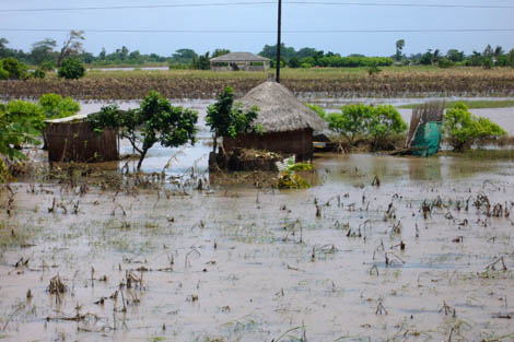 Flooded Xai Xai, a town that sits on the Limpopo River that burst its banks flooding southern Mozambique, February 2013.