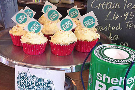 Cakes baked for the Big Cake Bake at Genki, one of the 19 cafes in the UK that participated during BSW, June 2013.