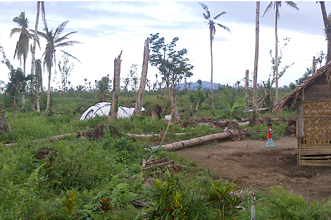 Luncia Tragura and her grandson now have a safe and dry shelter to live in as they begin to rebuild their home, Leyte, Philippines, February 2014.