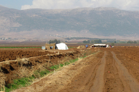 BEKAA VALLEY, LEBANON. NOVEMBER 2013. Abo farms the land surrounding their tented settlement for money for their livelihoods. (Rebecca Novell/ShelterBox)