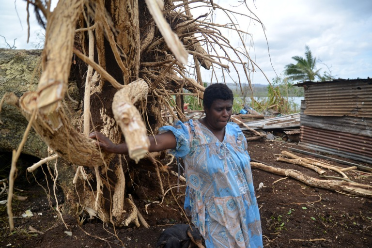 A Vanuatu woman stands by a massive tree which crushed a nearby vehicle (CARE/Tom Perry)